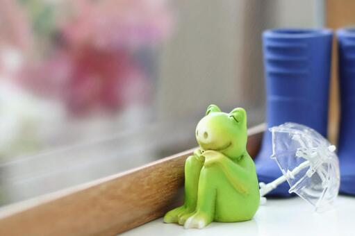 Frog watching outside