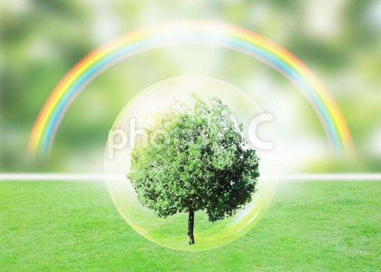 癒し イメージの写真