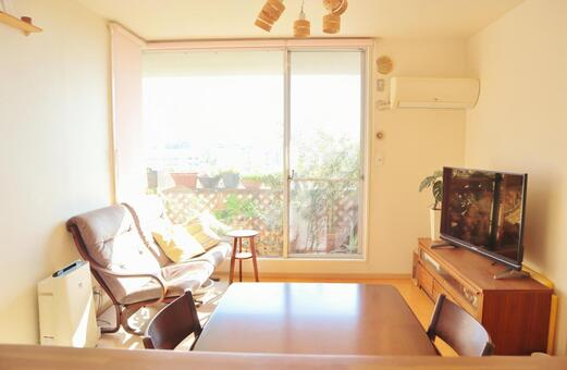 Living Bright Living Narrow Living Apartment Living Room