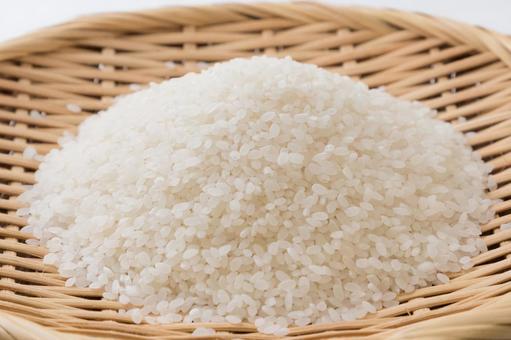 쌀 (정미)