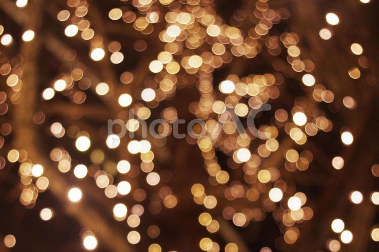 イルミネーションのライトの玉ボケ小の写真