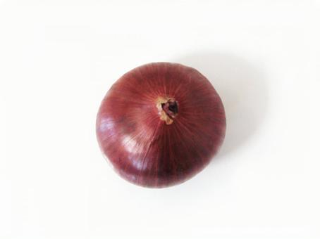 Purple onion 3 (with cutout path)