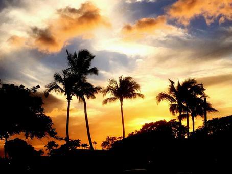 하와이의 일몰