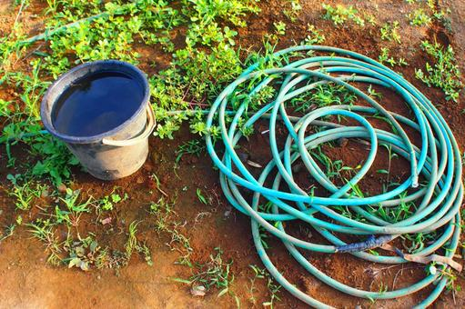 Hose and old bucket