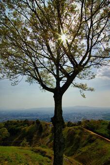 Mount Wakakusa