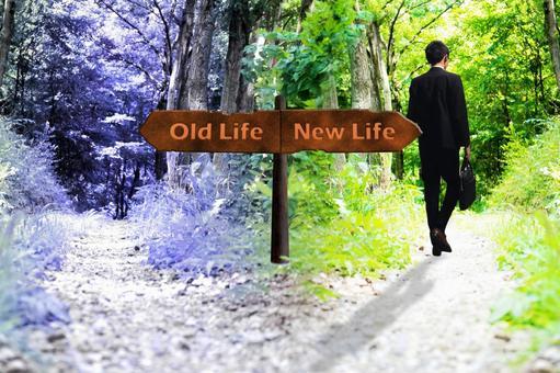 新生活的決定