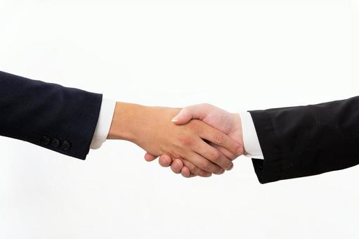 Businessman shaking hands 02