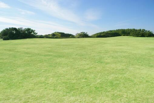 Lawn_background_41