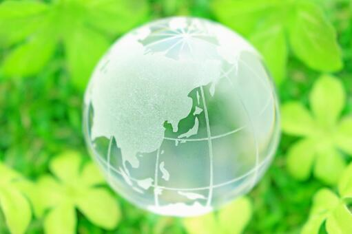 Environmental problems and ecology