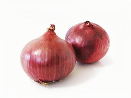 Purple onion 2 (with cutout path)
