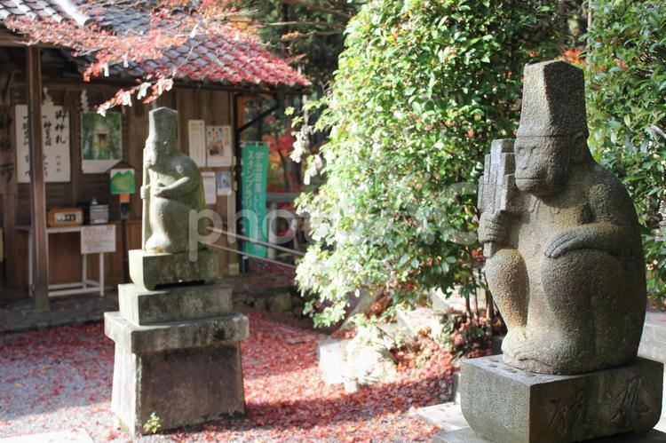 猿丸神社の狛猿1の写真