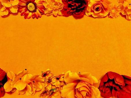 오렌지 배경 오렌지 꽃 프레임