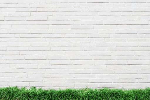 White brick background and fresh green grass