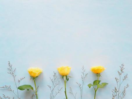黃玫瑰植物框架