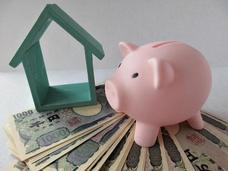 Piggy bank and money (45)