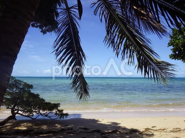 フィジー、マナ島のビーチの写真