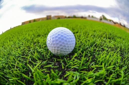 A golf ball placed on a lawn