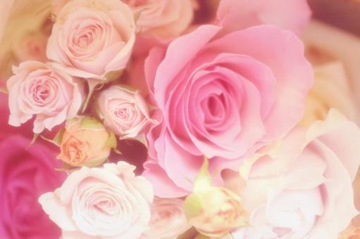 Fluffy rose bouquet 1
