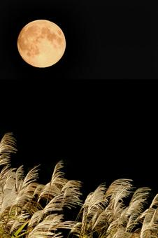 The moon of 15th night