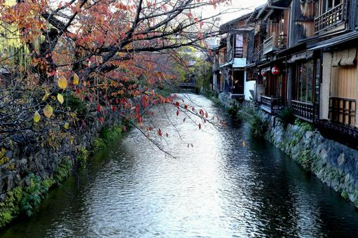 Kyoto Autumn in Kyoto Gion Shirakawa
