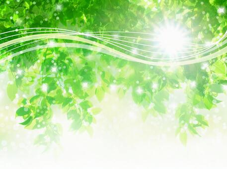 Summer sun, fresh green sunbeams and streamlined abstract background