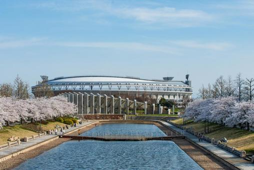Ecosta and Sakura