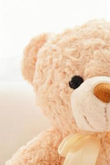 熊毛绒动物3