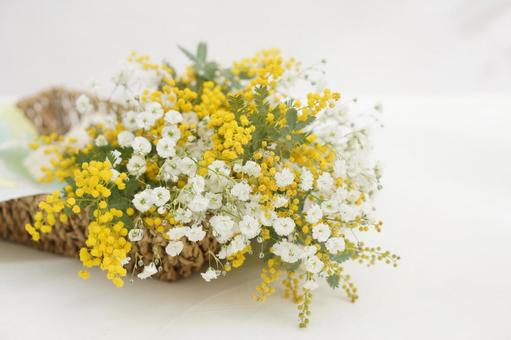 Bouquet of mimosa and gypsophila in a basket