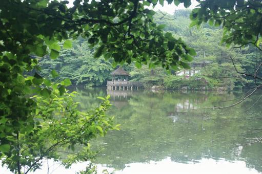 三寶寺池2