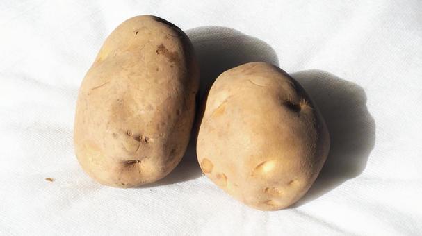 Large copy of potatoes