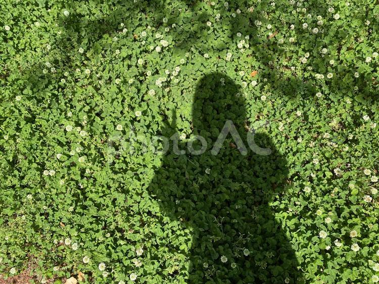 ピースをする人影の写真