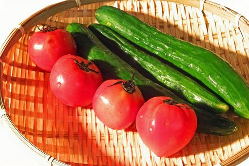 Tomato and cucumber # 7