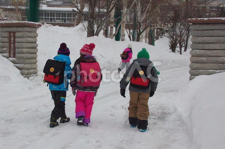 寒い朝の登校の写真