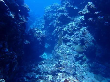 Diving Iriomote Island Okinawa