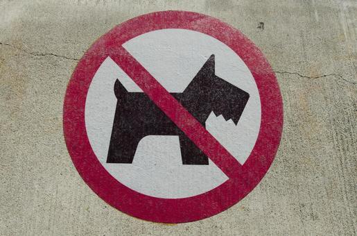 Prohibited mark dog