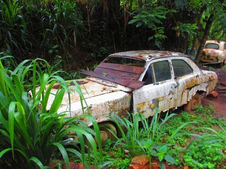 Sri lanka abandoned car ruins
