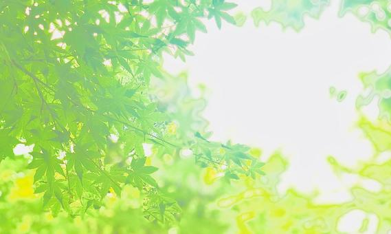 Glittering blue maple leaves background 2