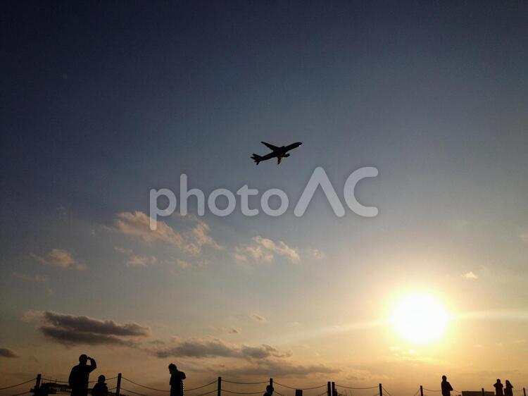 城南島海浜公園 飛行機の写真