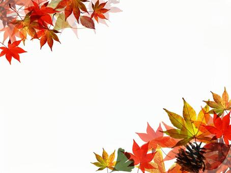 Autumn leaves background text space 160824