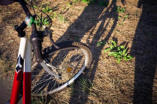 自行车轮胎11
