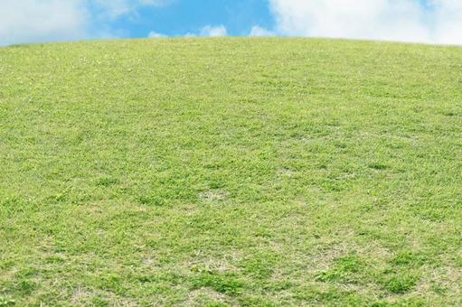 Lawn square