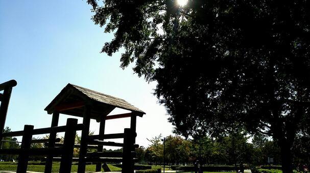 공원의 햇살
