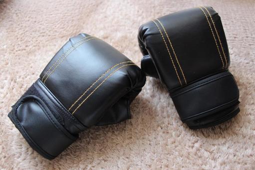 Boxing Gloves Karate Kickboxing Training Taekwondo