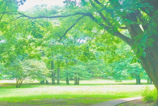 Green path background