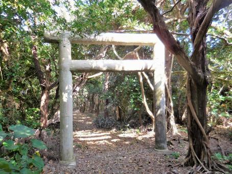 """沖繩縣塔拉瑪島""""帕納里的祭祀場所,鳥居"""""""