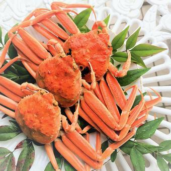 交付Kobako蟹Kobako蟹Zuwai蟹食家SDGs耗竭可持續可持續物質背景