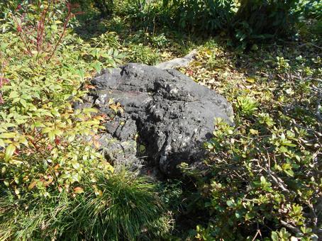 큰 돌 (3)