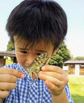 A boy who caught a swallowtail butterfly