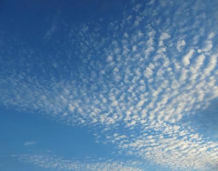 비늘 구름