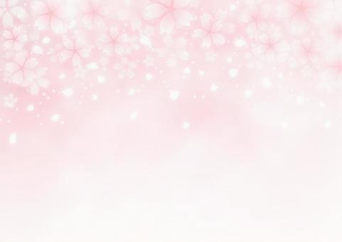 환상적인 벚꽃 눈보라 봄 배경 소재 (연 분홍색)